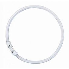Osram Лампа кольцевая люминесцентная LUMILUX T5 FC 55W/840 холод. белый, d=16мм 2GX13